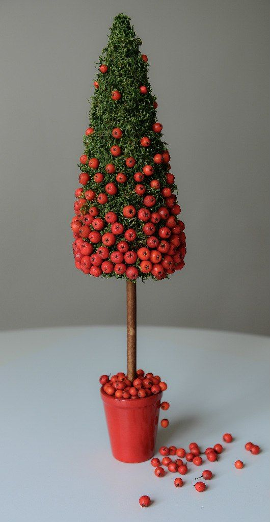 Simple moss topiary studded with what appears to be Pyracantha fruit.