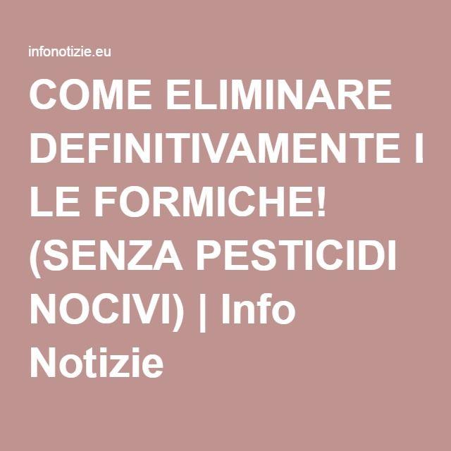 COME ELIMINARE DEFINITIVAMENTE LE FORMICHE! (SENZA PESTICIDI NOCIVI) | Info Notizie