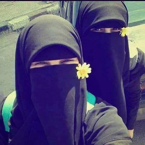 cute niqabis