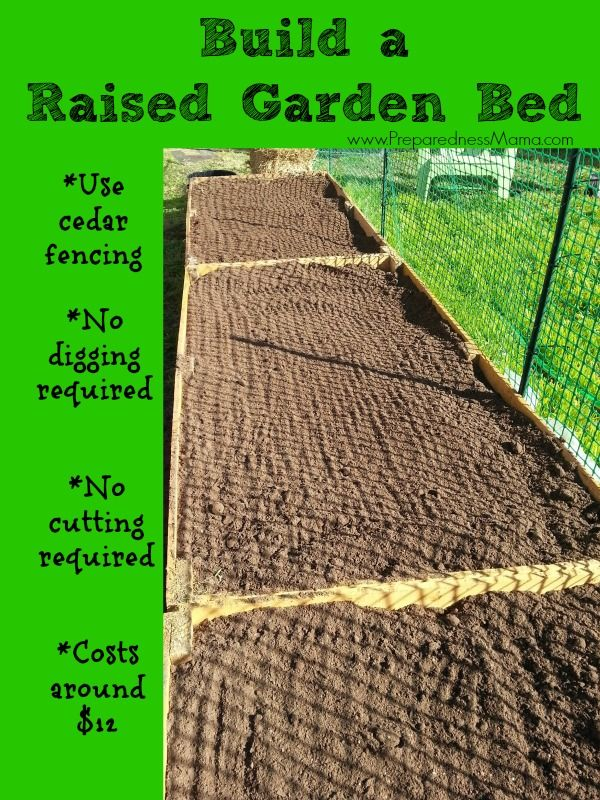 Build a raised garden bed for around $12. Detailed Instructions | PreparednessMama