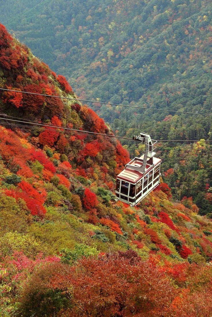 仁田峠 Nita ridge (in  autumn)