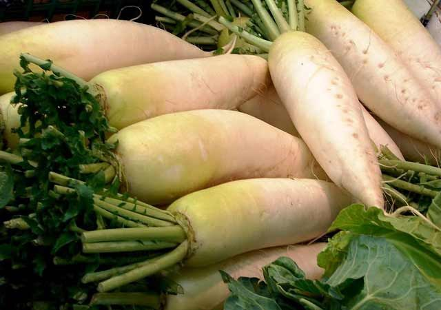 Daikon, radice per depurarsi e dimagrire: mucolitico, diuretico, e bruciagrassi naturale
