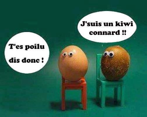 T'es poilu dis donc! [So you're hairy!] J'suis un kiwi connard!! [I'm a kiwi, idiot!!]