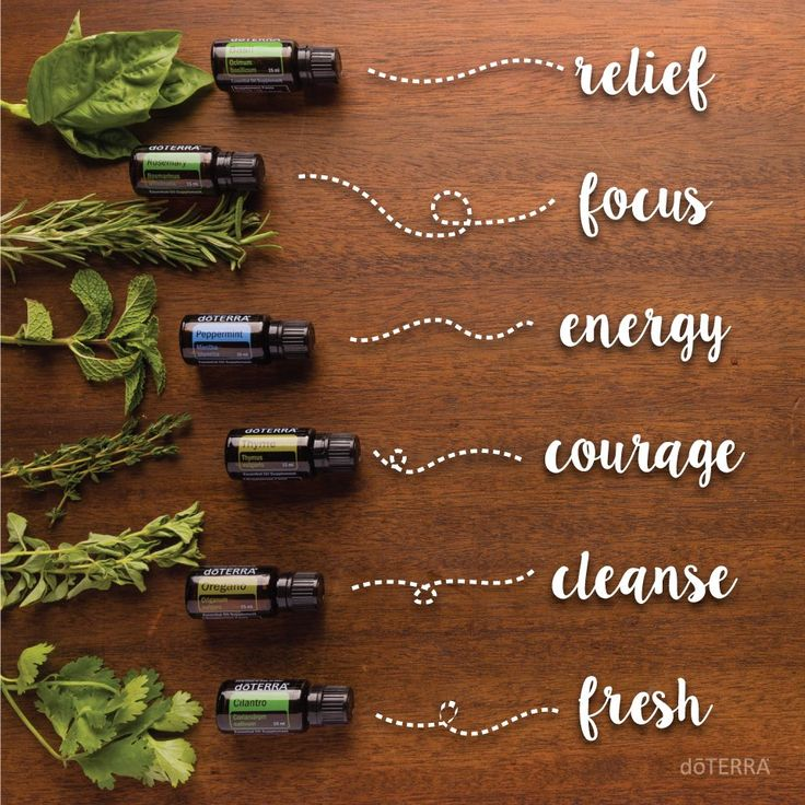 """""""From herb, to bottle, to body. Herbal essential oils aren't just for cooking. Use these herbal essential oils to balance your body and discipline your mind."""" doTERRA International  FROM TOP TO BOTTOM: Basil, Rosemary, Peppermint, Thyme, Oregano, Cilantro ~ Get wholesale prices with LLTY! Send us a message to get started."""