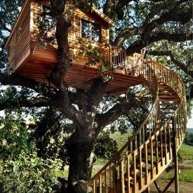treetop house - Suite Bleu