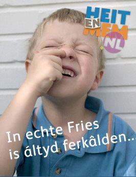 In echte Fries is altyd ferkâlden...