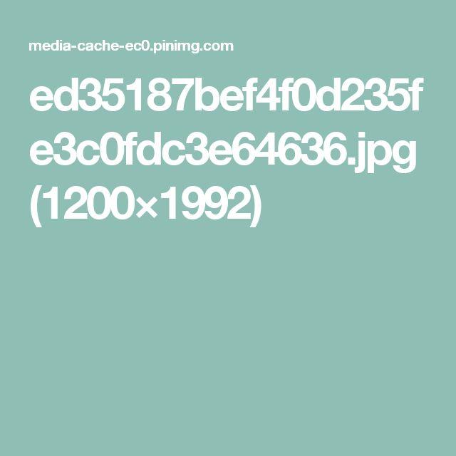 ed35187bef4f0d235fe3c0fdc3e64636.jpg (1200×1992)