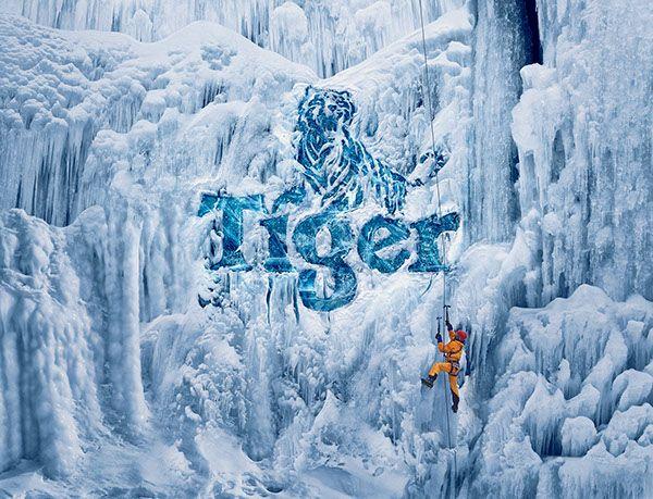 Tiger Beer on Behance