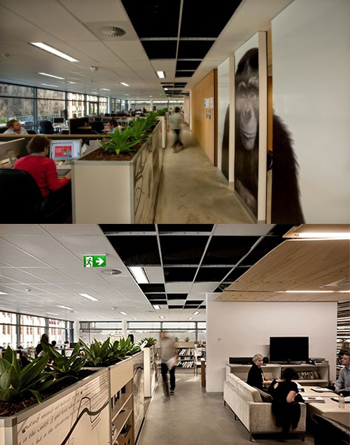 107 best images about best cubicles on pinterest the office modern office design and metal panels - Cubicle planters ...