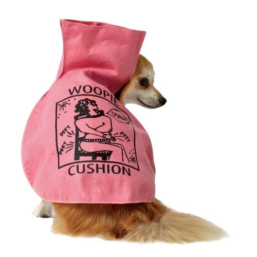 Whoopie Cushion Pet Costume from Buy Costumes on Catalog Spree, my personal digital mall.
