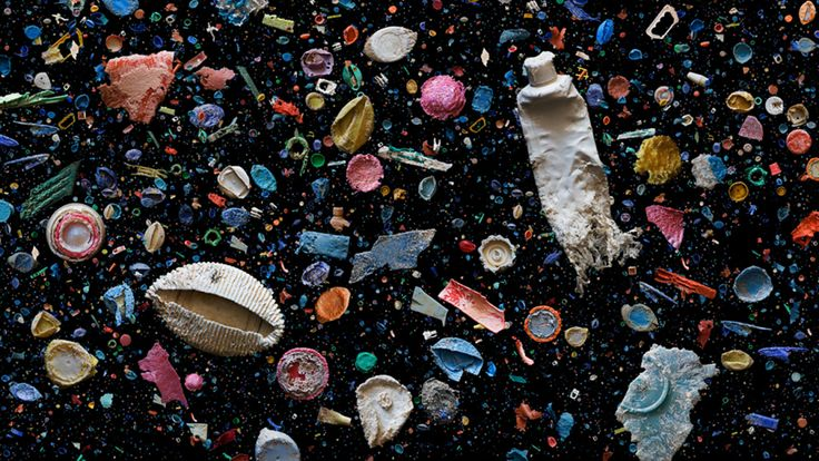 These artists turn ocean trash into really classy art | Grist