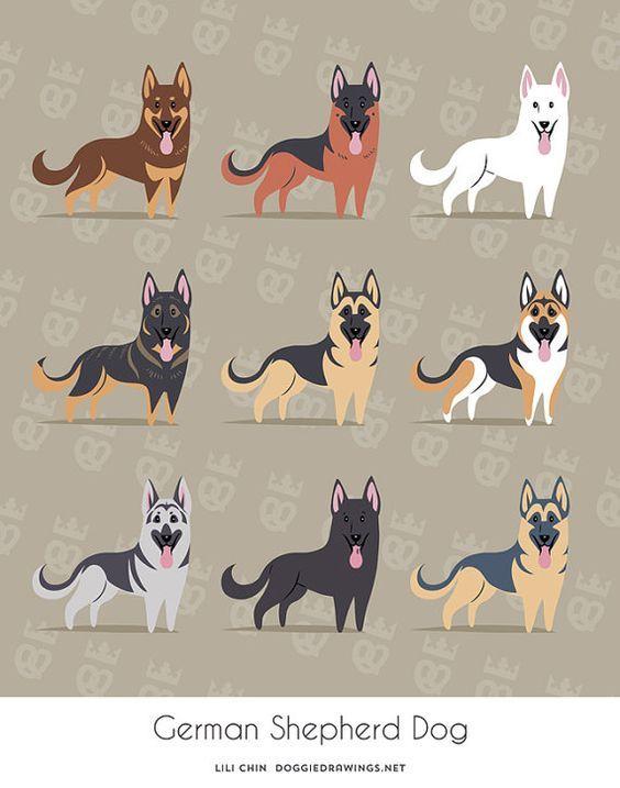 German Shepherd Dogs art print: