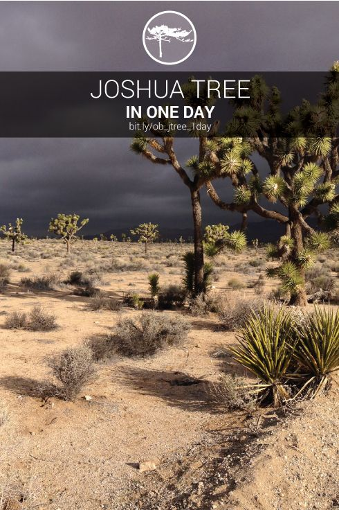 This one day itinerary hit is a great way to see Joshua Tree National Park on limited time - http://www.outdoorblueprint.com/read/joshua-tree-in-one-day/