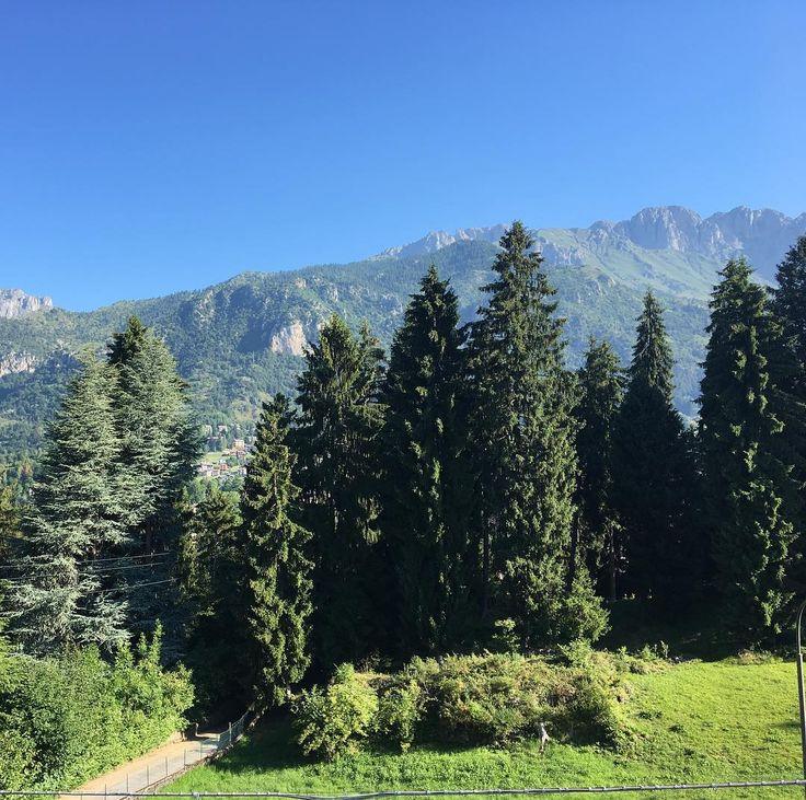 Buongiorno  #buongiorno #estate #estate2017 #montagna #mountains #panorama