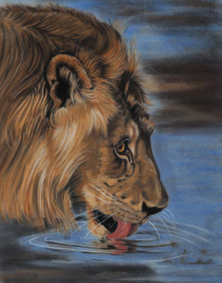 Thirsty lion, pastels by Sarahharas07.deviantart.com on @deviantART