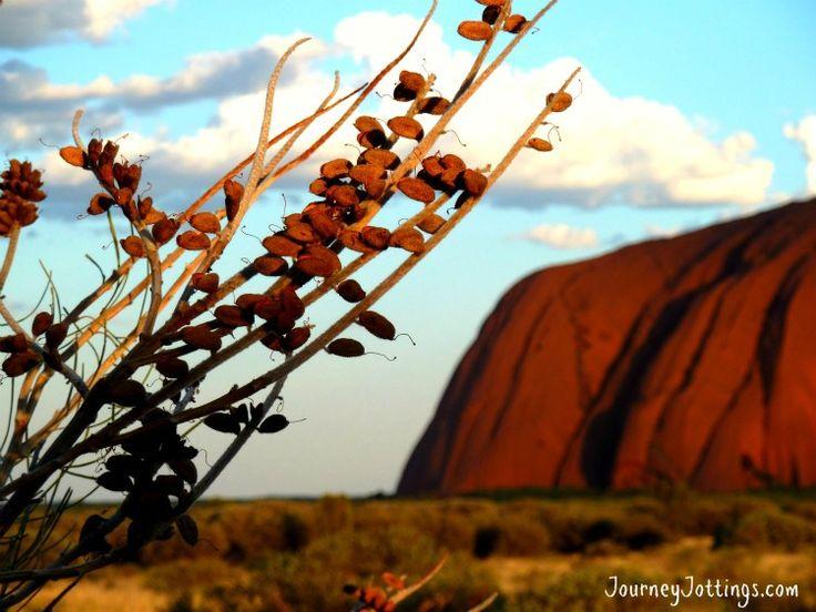 Uluru budget travel guide