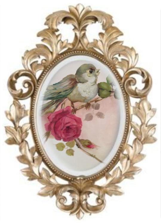 Featured Guest Interview with Cindy Ellis- California Romantic Rose Oil Painter. Photo copyright Cindy Ellis.