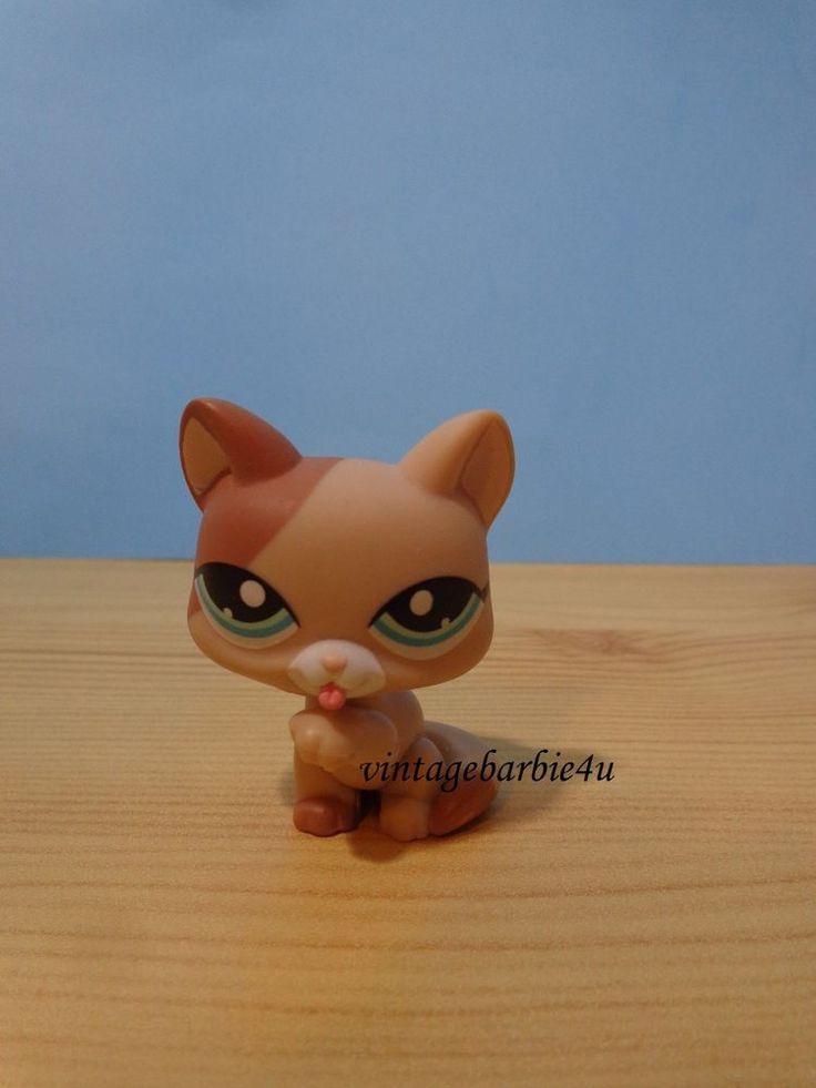 Littlest Pet Shop LPS #1363 Cat Short Hair Tan Brown Mocha Blue Eyes Licking Paw #Hasbro