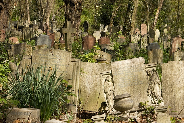 gravestones getting warm with the sun at tower hamlets cemetery..
