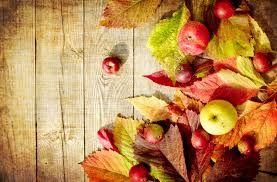 Resultado de imagen para imagenes del otoño