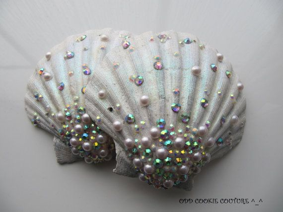 759 Best Images About Sea Shells Variety Crafts And Ideas