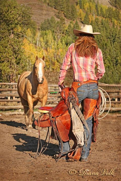 Cowgirls are a different breed...Can take the Cowgirl out of the country, but you can't take the country out of the Cowgirl!