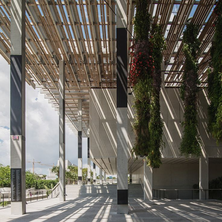 PAMM-Canopy-and-Shadow-Square_desat