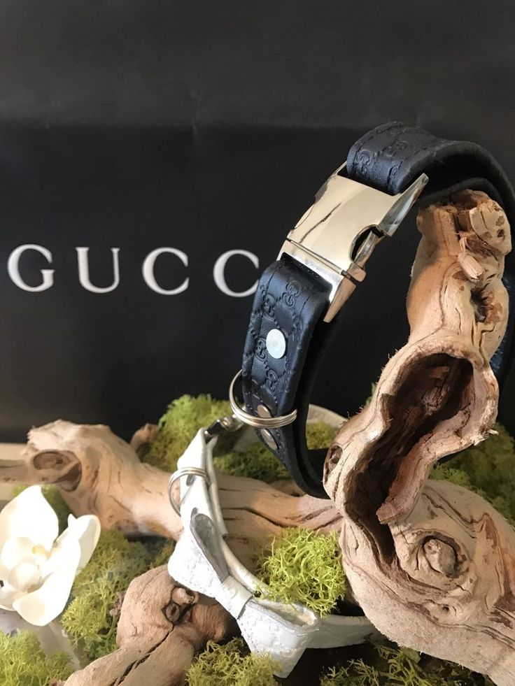 Gucci Dog Collar GG Embossed Leather Logo Microguccissima Made in ITALY   eBay