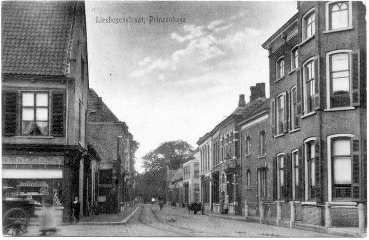 Liesboschstraat Princenhage