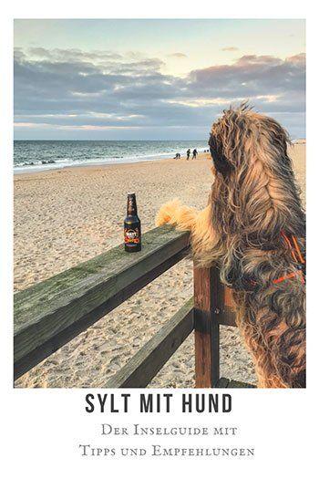 Sylt mit Hund - Urlaub mit Hund. Tipps und Empfehlungen für Hundefreundliche Hotels & Restaurants. Hundestrände, Anreisetipps und Wissenswertes zu Sylt.