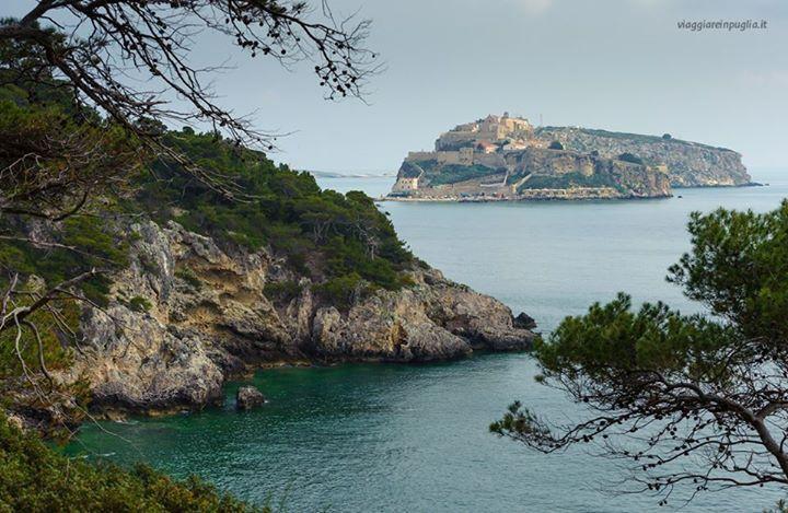 Oggi vi auguriamo buon pomeriggio con questo pittoresco scorcio delle Isole Tremiti, le perle dell'Adriatico, circondate da un mare profondo blu ed estremamente pescoso. Se volete saperne di più, consultate il nostro portale http://www.viaggiareinpuglia.it/at/63/comune/317/it/Isole-Tremiti-Isole-Tremiti-(Foggia) #WeAreinPuglia