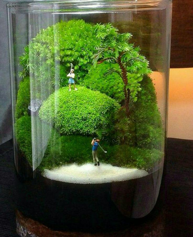 Secret Garden: 700+ Best #Container #Gardening Ideas Images On Pinterest