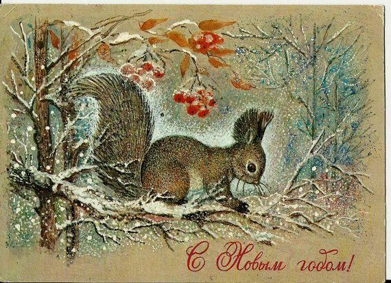 Squirrel - Happy New Year - Vintage Russian Postcard