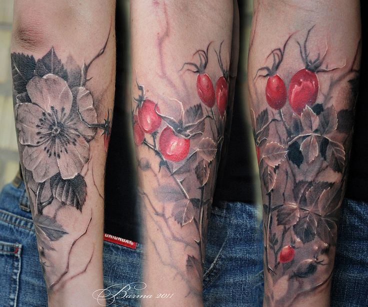 Черно-белый куст шиповника с красными ягодами. Скачать тату фото, эскиз татуировки.