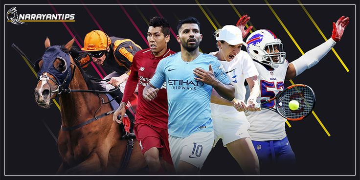 Narayntips provide you with basic online sports betting