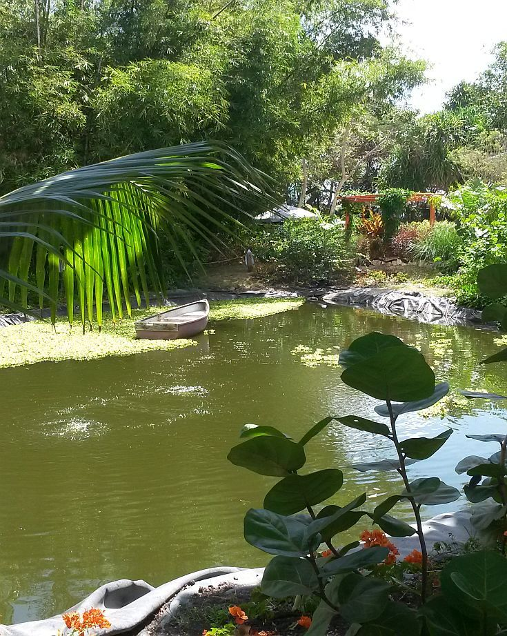 Looking for something different to do on your next visit to Barbados? Stop by Nature Care Garden Centre to stroll among tropical flowers & shrubs, meander around the man-make lake, and enjoy lunch or drinks at the Dragonfly Cafe overlooking the lake. You can also get a souvenir for your garden such as locally made wind chimes, sun dials and garden ornaments.