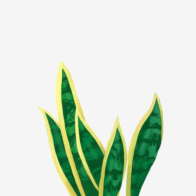 Hand Drawn Green Plant Tropical Plant Vector Illustration Png Illustration Hand Painted Green Plant Png Transparent Clipart Image And Psd File For Free Downl Plant Vector Tropical Plants Green Plants