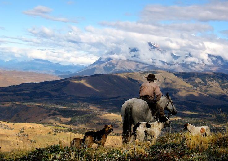 patagonia gauchos - Google Search