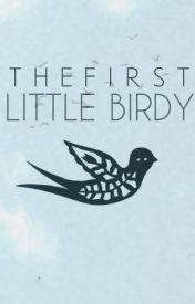 The First Little Birdy (Batman)