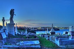 Waverley Cemetery is one of my favorite places in Sydney. Apart from being the most beautiful spot to be laid to rest, on the cliffs overlooking the water between Bronte and Clovelly beaches, the old, crumbling headstones are works of art in and of themselves, and it is just so peaceful to walk around.