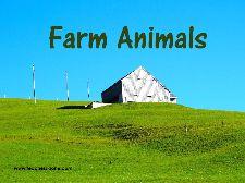 FARM ANIMALS - Teacher's Zone