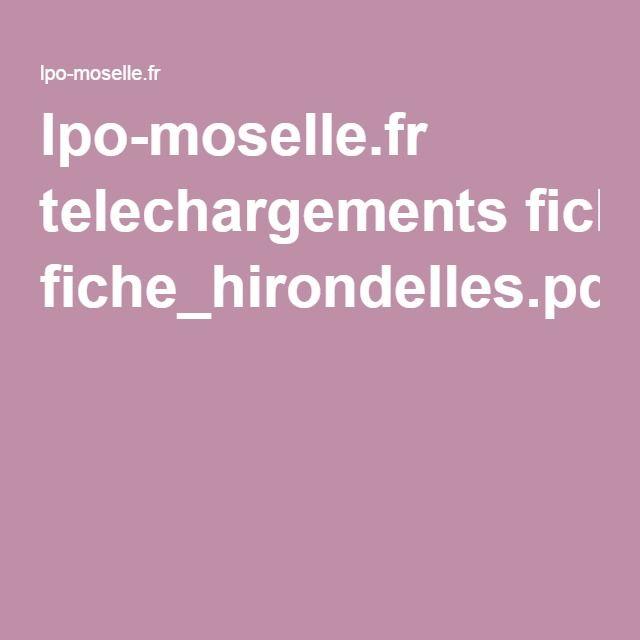 lpo-moselle.fr telechargements fiche_hirondelles.pdf