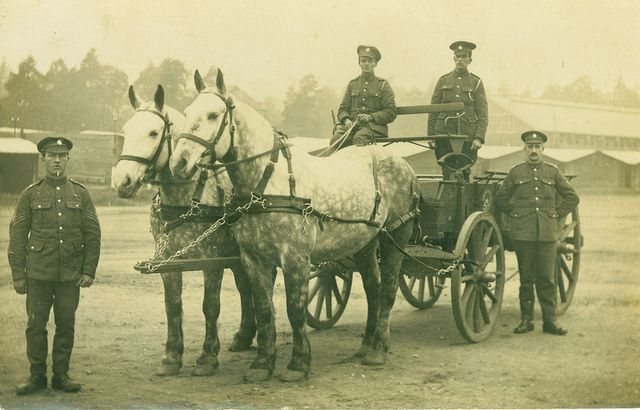 An Army Service Corps Horse Transport limber in France 1918. War Horse