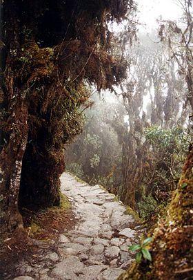 Red caminera del Tahuantinsuyu - Wikipedia, la enciclopedia libre