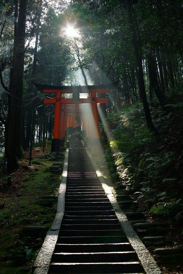 Follow the stairs into a land of tradition... Fushimi Inari Shrine - Kyoto, Japan:
