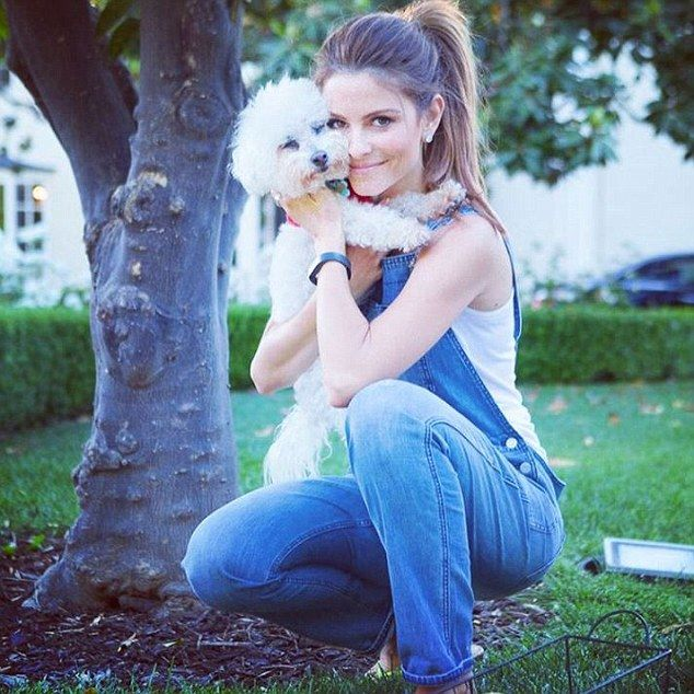 Loss in the family: Baby, Maria Menounos' 17-year-old Bichon Frise, has died, the TV prese...