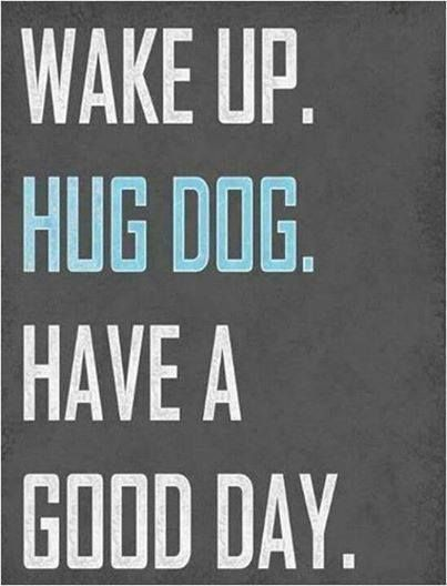 Wake up. Hug dog