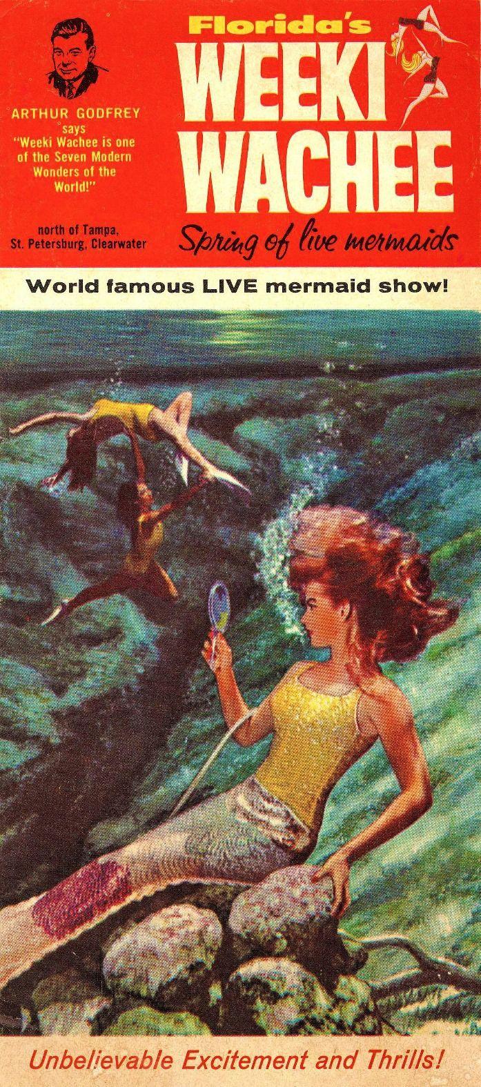 Floridas Weeki Wachee Spring Of Live Mermaids Color Scheme