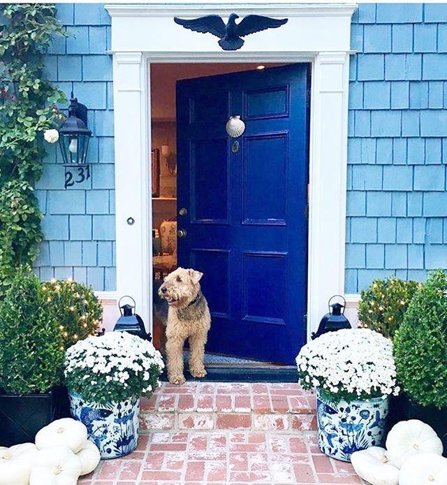 101 best Doors images on Pinterest