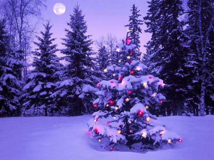 las mejores ideas sobre luces exteriores de navidad en pinterest y ms de porche de navidad y de la casa de la navidad